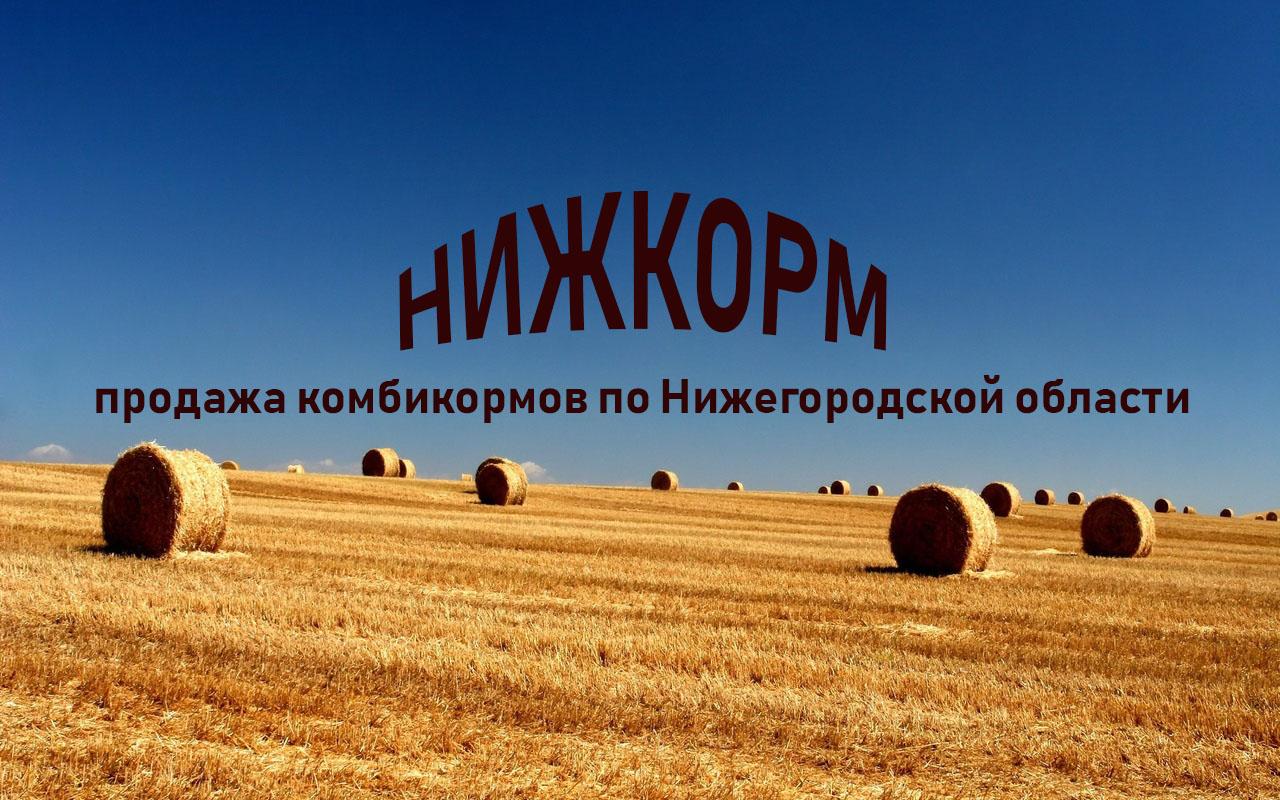 2fons.ru-24579